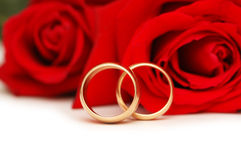 Two wedding rings and roses isolated on white Stock Images