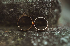 Two wedding rings on a stone Stock Photos
