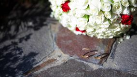 Two wedding rings on a stone with pink flowers of a geranium.  stock video