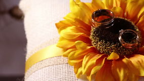 Two wedding rings on sunflower decoration.  stock video