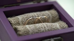 Two wedding rings in violet box. Closeup stock video