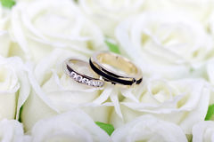 Two wedding rings on white. Roses bouquet Stock Image