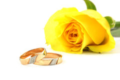 Two wedding rings and yellow rose. Wedding rings and rose on white background stock image