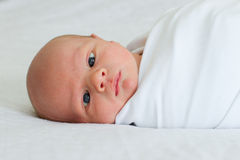 Two week old newborn bundled on bed Stock Photo