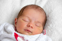 Two weeks old baby girl lying in bed Stock Images