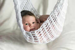 Two weeks old baby in the hammock Royalty Free Stock Photos