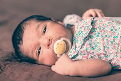Two weeks old newborn baby girl lying down with a pacifier. Close up portrait of a cute two weeks old newborn baby girl lying down with a pacifier or dummy, eyes Stock Photo