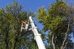 Two well-equipped workers were uploaded high to cut the city trees. Care of trees and bushes in the urban environment Stock Image