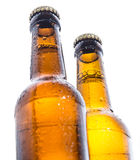 Two wet bottles of Beer on white Royalty Free Stock Images