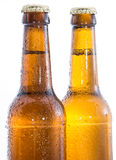 Two wet bottles of Beer on white Royalty Free Stock Photo