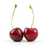 Two wet cherries isolated on white Stock Photo