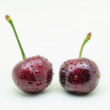 Two wet cherries on a white background. Two wet cherry berries on white background stock images