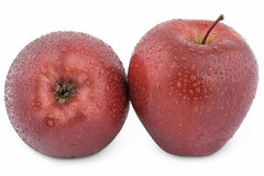 Two wet red apple Royalty Free Stock Photos