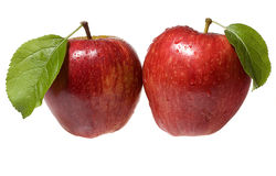 Two wet red apples Royalty Free Stock Photos