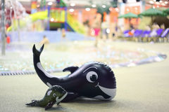 Two whale, large and little, lie near pool Royalty Free Stock Image