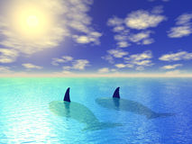 Two whales in blue lagoon. Two whales end blue lagoon Royalty Free Stock Photos