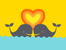 Two whales in love Stock Photography