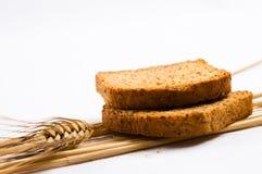 Two wheat toast. On white background Stock Image