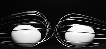 Two Whisks and eggs. Image of two whole eggs inside whisks Royalty Free Stock Photos