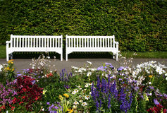 Two white benches Royalty Free Stock Images
