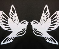 Two white birds, paper cutting Stock Photography
