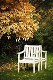 Two white chairs Royalty Free Stock Images