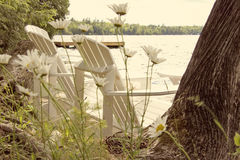 Two white chairs by the lake with daises behind stock images