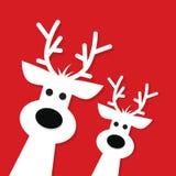 Two white Christmas Reindeer vector illustration