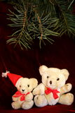 Two White Christmas Teddy Royalty Free Stock Images