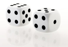 Two white dices with reflection Stock Photo