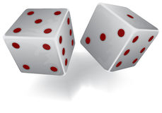Two white dices Stock Image