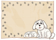 Two white dogs beside a frame Royalty Free Stock Photo