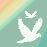 Two White Doves. With green yellow gradient background stock illustration