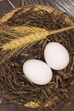 Two white eggs and wheat in a nest Royalty Free Stock Photo