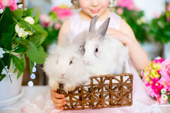 Two white fluffy bunnies in a basket Stock Photos