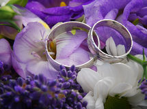 Two white gold wedding rings on purple bouquet. Close up photo of two wedding rings on purole wedding bouquet Stock Image