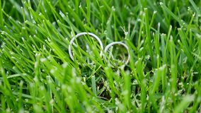 Two white gold wedding rings sitting in the green grass.  stock footage