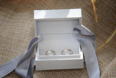 Two white gold wedding rings in the white ring box Stock Images
