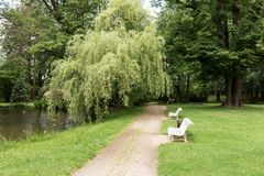 Free Two White Park Benches In The Park Stock Image - 150301791