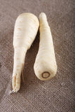 Two white parsnip roots on brown hessian rustic Stock Photography