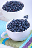 Two white plates with blueberries. On the striped serviette Stock Photography