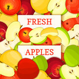 Two white rectangle label on apple fruit background. Vector card illustration. Stock Photo