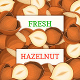 Two white rectangle label on hazelnut fruit background. Vector card illustration. Royalty Free Stock Photo