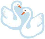 Two white swans Stock Photo