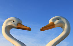 Two white swans facing each other Stock Photo