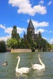 Two white swans Stock Photo