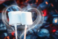 Two white sweet marshmallows roasting over fire flames. Smoke in form of heart. Marshmallow on skewers roasted on. Charcoals. Sweet love concept Stock Image