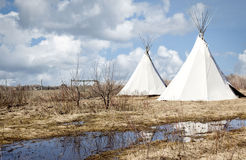 Two white teepee's sitting on wet dead grass. Royalty Free Stock Image