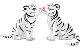 Two White Tigers in Love Stock Photo