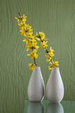 Two white vases over green background Stock Images
